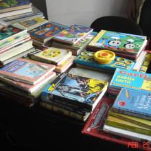 Krilate knjige (4)