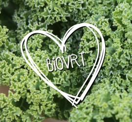 biovrt-logo